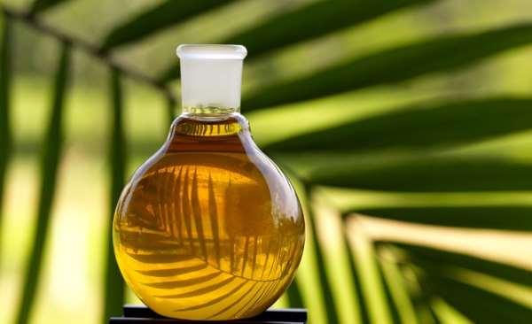 el aceite de palma
