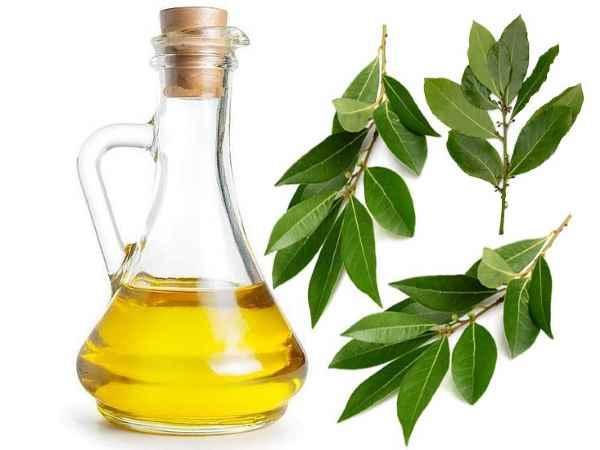 el aceite de laurel
