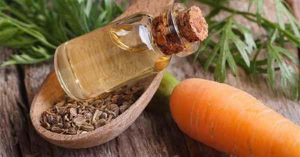 Cómo hacer el aceite en base a la zanahoria