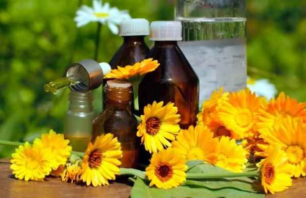 aceite de calendula para el cabello