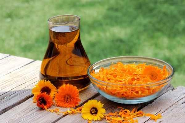 aceite de calendula casero