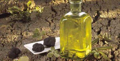 Propiedades y beneficios del Aceite de Trufa