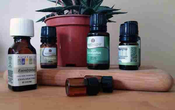 propiedades del aceite esencial de eucalipto