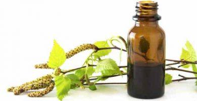 aceite de abedul propiedades