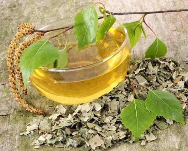 propiedades del aceite abedul