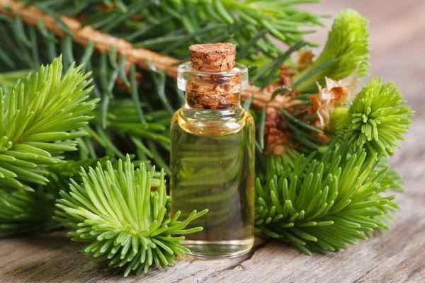 beneficios del aceite de cedro